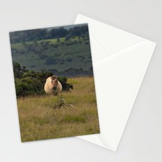 Wild Ponys in Cornwall Stationery Cards