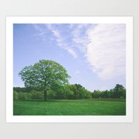 maudslay Art Print