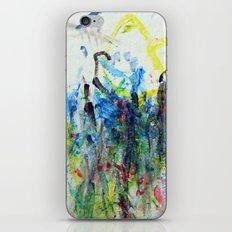 fullcolor iPhone & iPod Skin