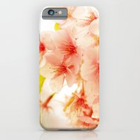 iPhone & iPod Case featuring BLOSSOM OF PINK by Ylenia Pizzetti
