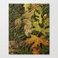 Fallen Autumn Leaves on the Shore of Hall Lake Canvas Print