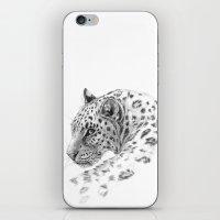 Leopard - Glance back iPhone & iPod Skin