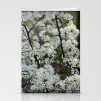 Soft White Stationery Cards