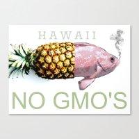 Hawaii NO GMO's Canvas Print