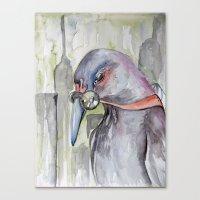 Urban Decay Pigeon Canvas Print
