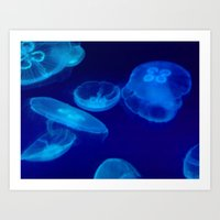 jellyfish Art Prints featuring ✔️Jellyfish by Tru Images Photo Art
