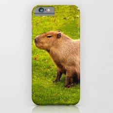 Capybara Slim Case iPhone 6s