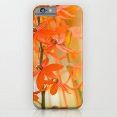 F.L.O.W.E.R.S. iPhone 6 Slim Case