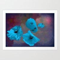 FLOWERS - Poppies Blue Art Print