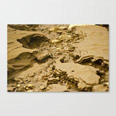 Mud Flats Canvas Print