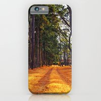 iPhone & iPod Case featuring September path by Vorona Photography