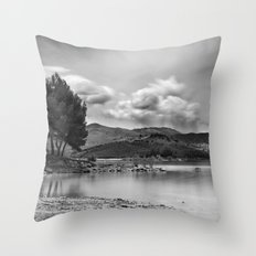 Silver water..... Throw Pillow