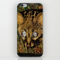 The Gate Of The Desert iPhone & iPod Skin