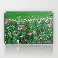 Field Of Pink Laptop & iPad Skin