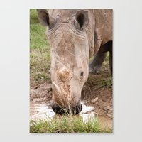A refreshing drink Canvas Print