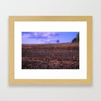 The Lonely Pumpkins Framed Art Print