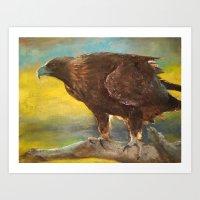 Golden Eagle (Aquila Chr… Art Print