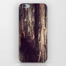 Wood Texture iPhone & iPod Skin