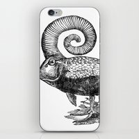 Carpé Duckems iPhone & iPod Skin