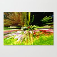 Distorting Colours Canvas Print