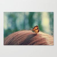butterflyyyy Canvas Print