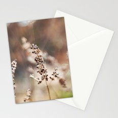 Winter Color Stationery Cards