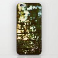 In Secret iPhone & iPod Skin