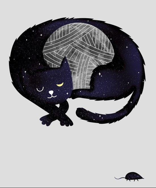 Feline Nocturnus Canvas Print