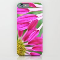 iPhone & iPod Case featuring Entwined by Beth - Paper Angels Photography