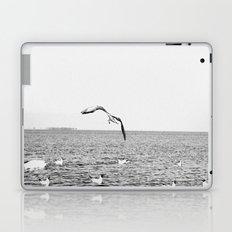 seagul Laptop & iPad Skin