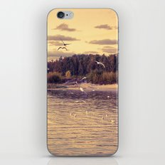 Flying around iPhone & iPod Skin