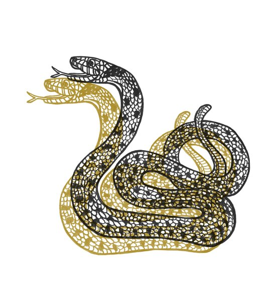 Snake (Black/Gold) Art Print