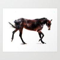 The Dancing Horse Art Print
