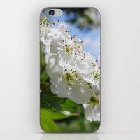 Buds #1 iPhone & iPod Skin