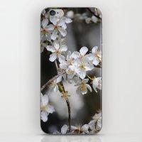 Weißes Blütenmeer iPhone & iPod Skin