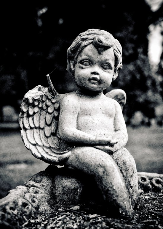 Forgotten angel Canvas Print
