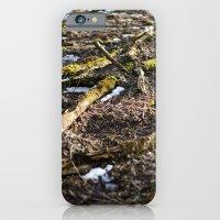 Shiny Spring iPhone 6 Slim Case