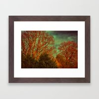Trees, Trees, Trees Framed Art Print