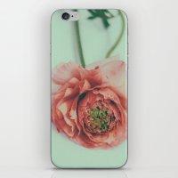 melon iPhone & iPod Skin