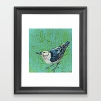 White Breasted Nuthatch Framed Art Print