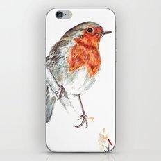 European Robin iPhone & iPod Skin