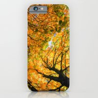 Autumn Sky iPhone 6 Slim Case