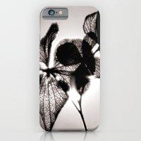 Sun Shine iPhone 6 Slim Case