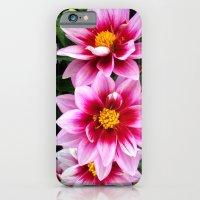 Valses iPhone 6 Slim Case