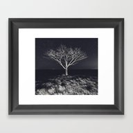 Branching Into The Stars Framed Art Print