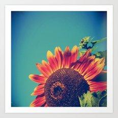 Summer Sunflower Art Print