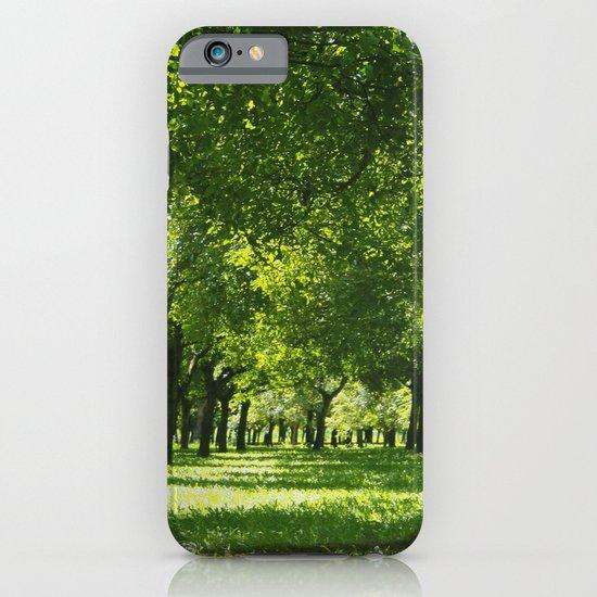 walnut trees iPhone & iPod Case