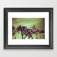 Redscale Blossom Framed Art Print