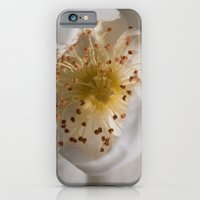 White bloom iPhone 6 Slim Case