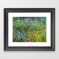 Natures Colors Framed Art Print